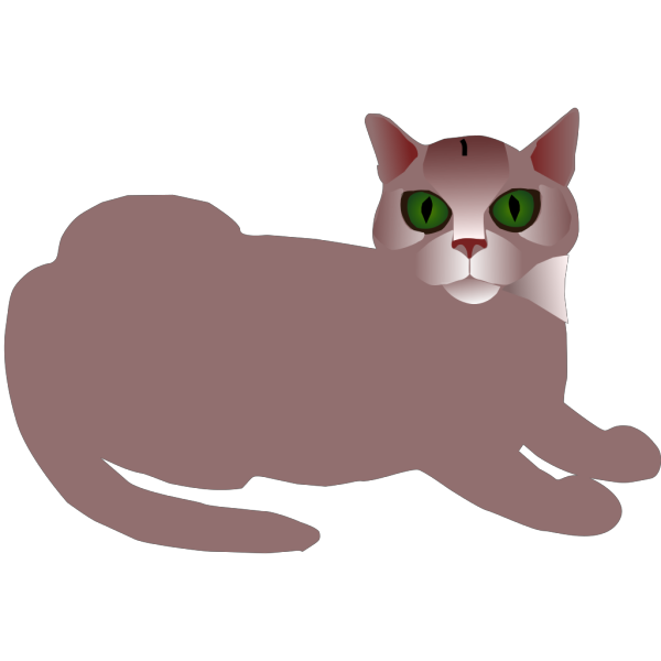 Tabby Cat PNG images