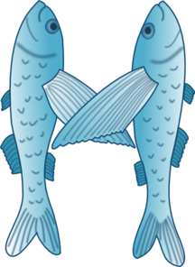 Fish Forming Letter M PNG Clip art