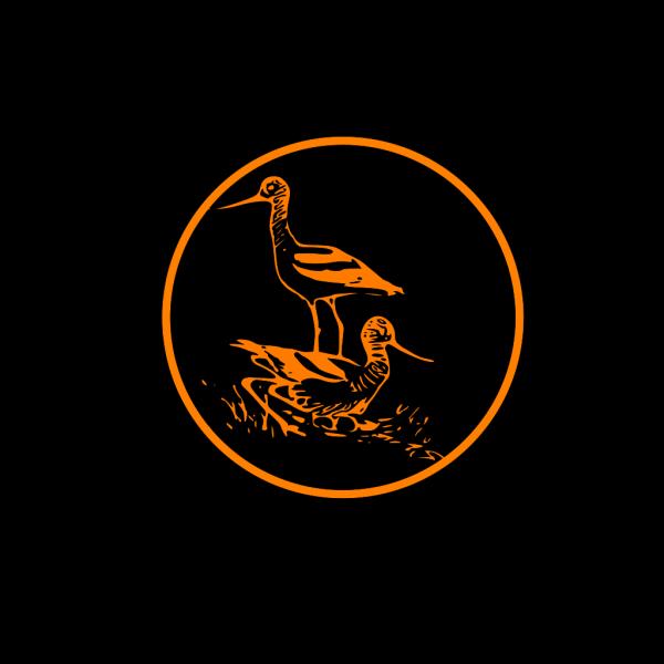 Shore Birds PNG Clip art