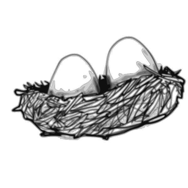 Bird Nest With Eggs PNG Clip art