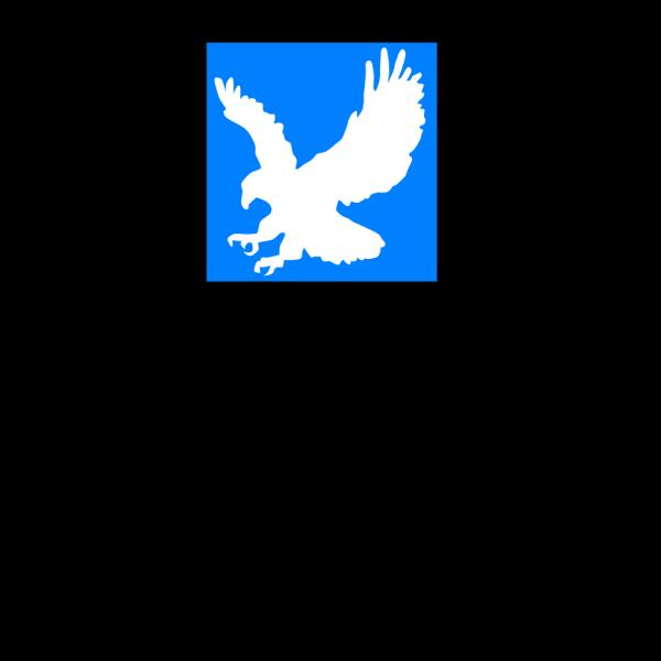 White Eagle PNG Clip art