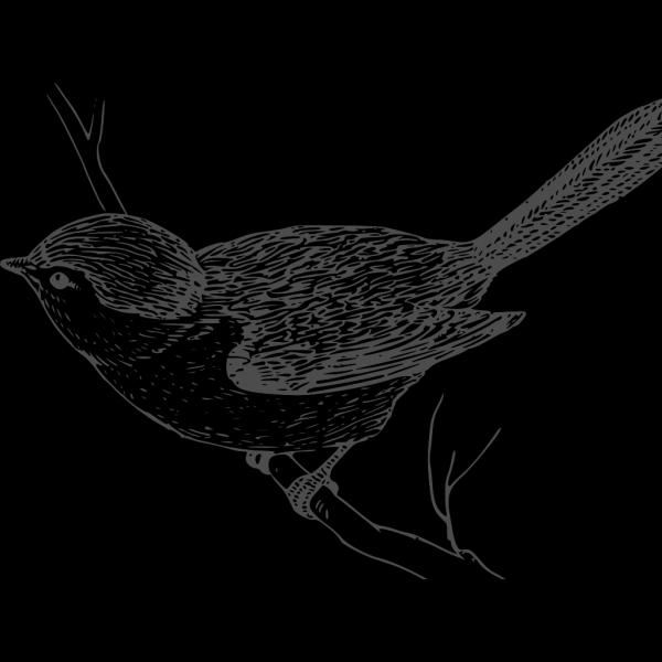 Grey Little Bird PNG Clip art