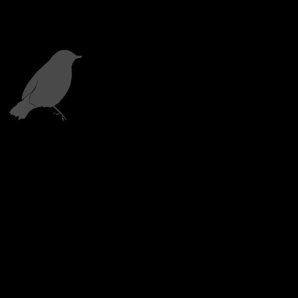 Gray Bird PNG Clip art