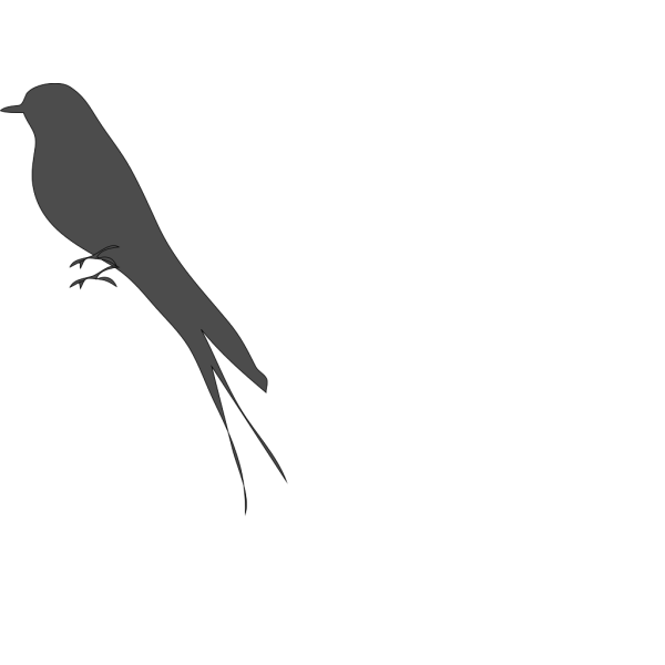 Gray Bird PNG icon