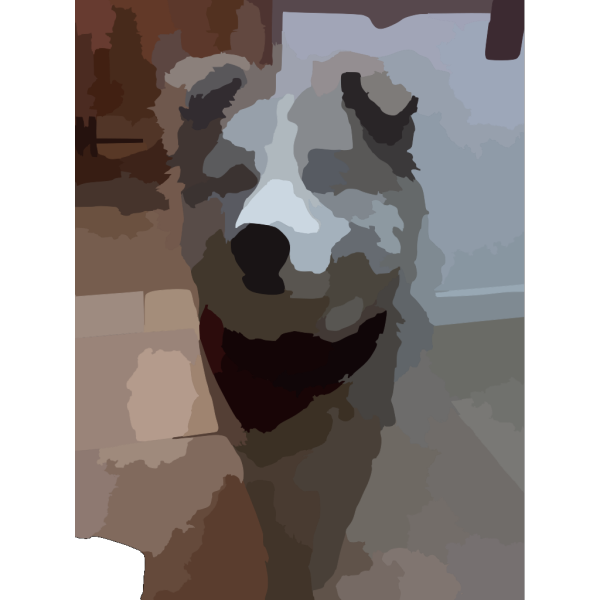 Blurred Pet Photo PNG icon