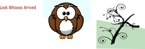 Owl PNG icons