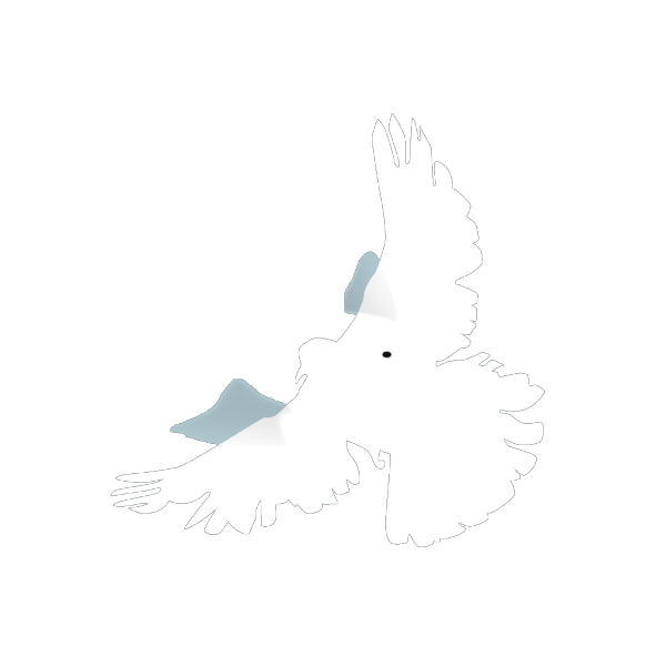 White Dove PNG icons