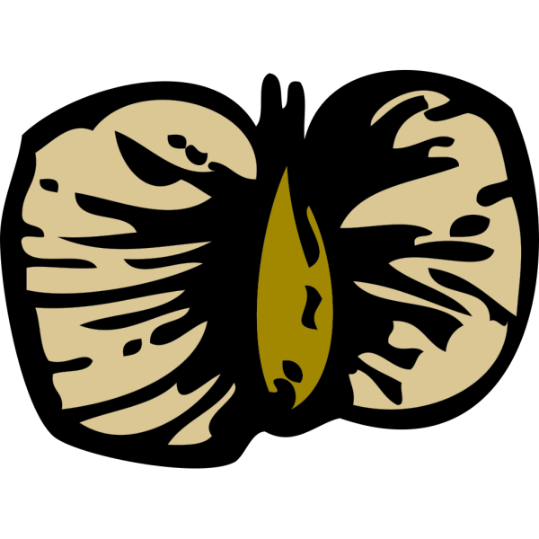 Birch Seed PNG Clip art