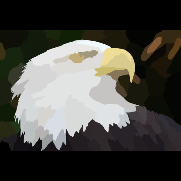 Eagle Ff F Ab B Clip art