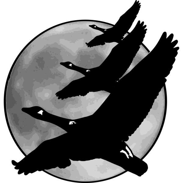 Geese In Front Of Moon PNG Clip art