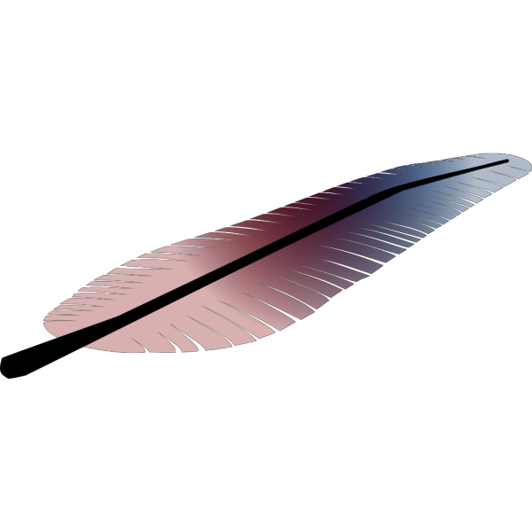 Colored Feather PNG Clip art