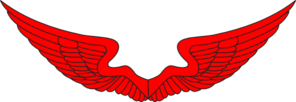 Wings PNG icons