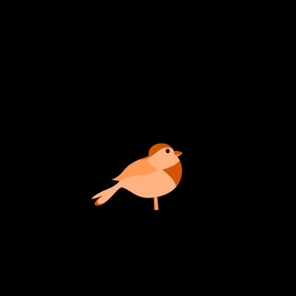 Little Bird PNG Clip art
