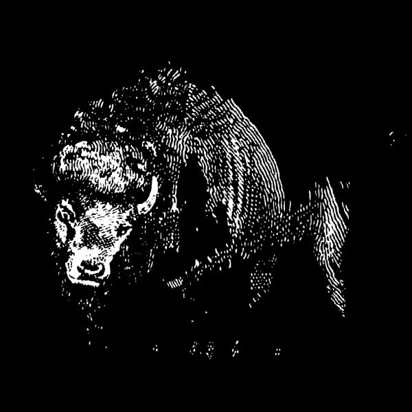 Buffalo PNG images