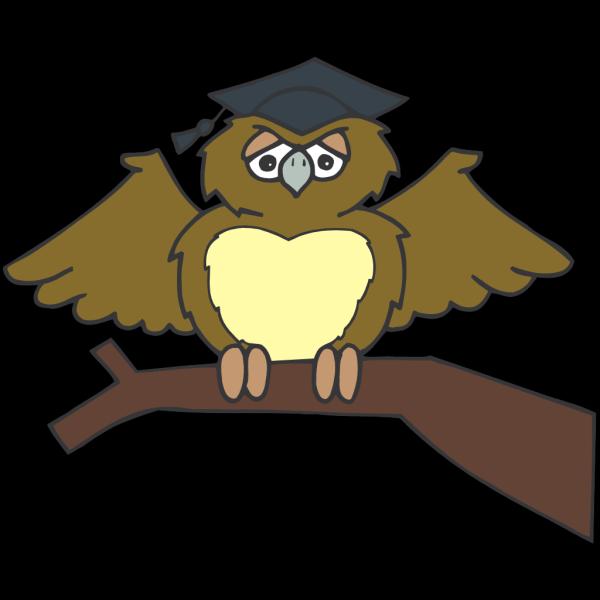 Owl Graduate PNG Clip art