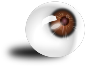 Eyeball Brown PNG images
