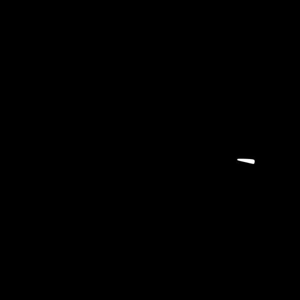 Jousting Lance PNG Clip art
