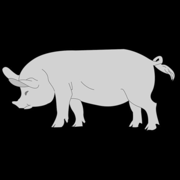 Gray Pig PNG Clip art