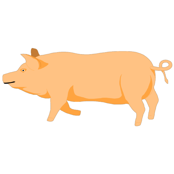 A Pig PNG Clip art