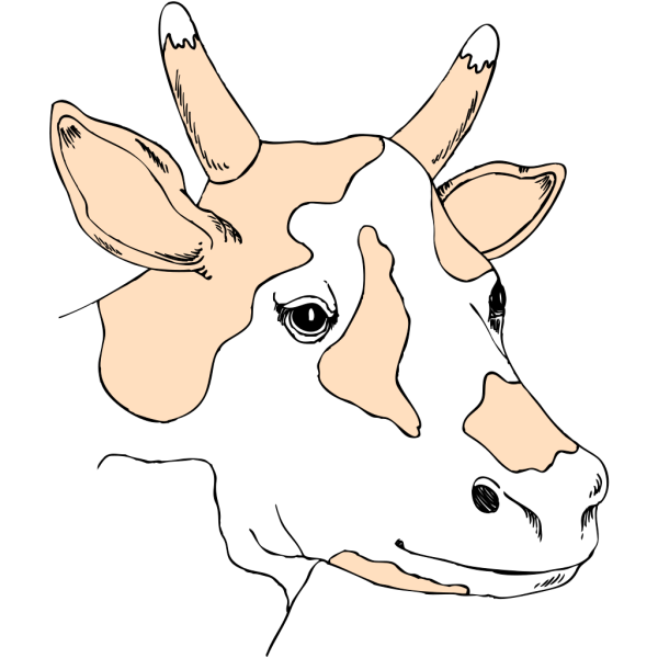 Light Colored Cow Head PNG Clip art