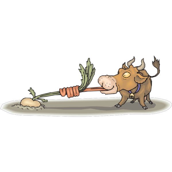 Cow Eating Turnip PNG Clip art