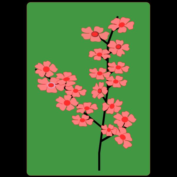 Sakura Flower PNG Clip art