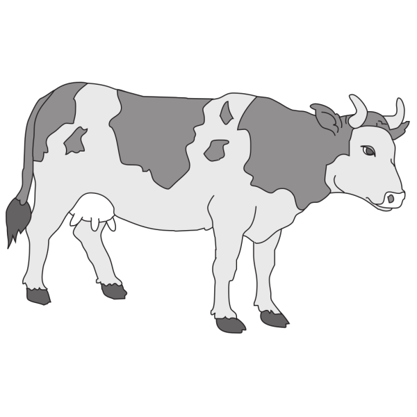 Gray Colored Cow PNG Clip art