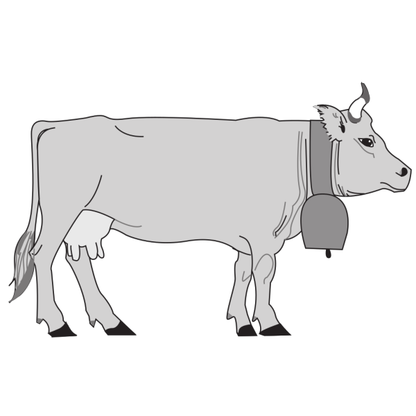 Gray Cow Side View PNG Clip art