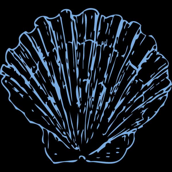 Scallop PNG Clip art