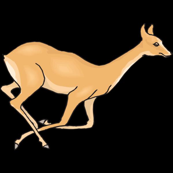 Deer Fleeing PNG Clip art