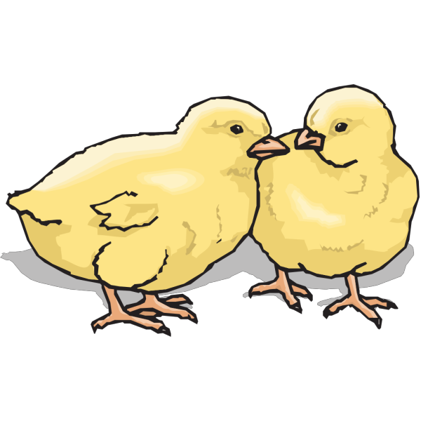Two Chicks PNG Clip art