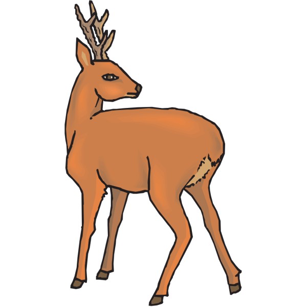 Deer Looking Back PNG Clip art