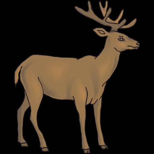 Brown Deer PNG Clip art
