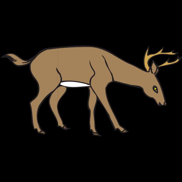 Deer Leaning Down PNG Clip art
