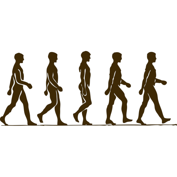 Walking Brown PNG Clip art
