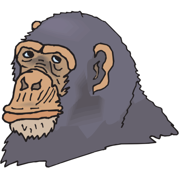 Gray Chimp Head PNG images