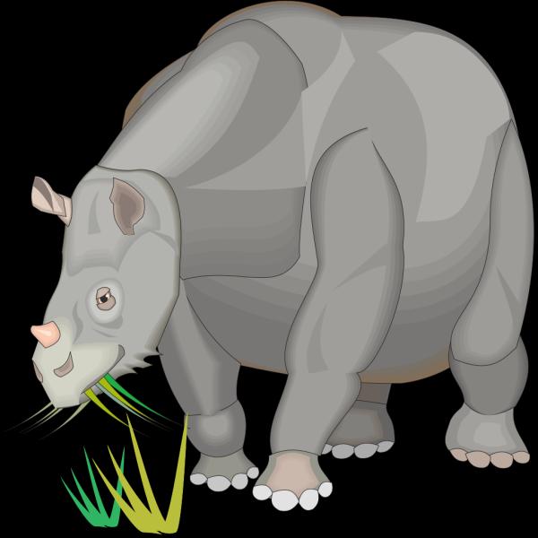 Rhinoceratoidea PNG Clip art