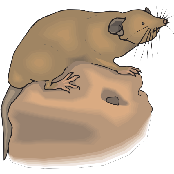 Mole Aboveground PNG Clip art