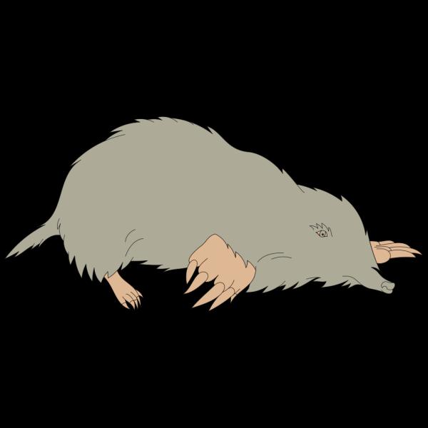 Gray Mole PNG Clip art