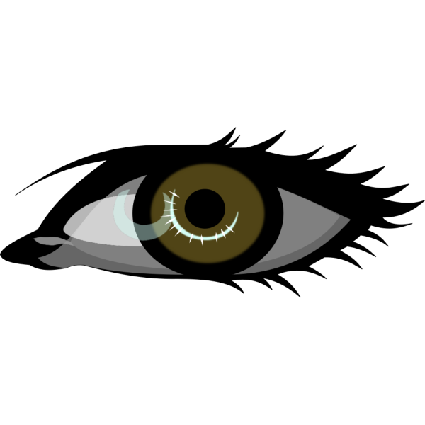 Brown Eye PNG Clip art