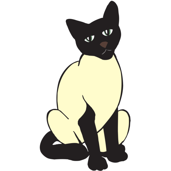 Siamese Cat PNG images