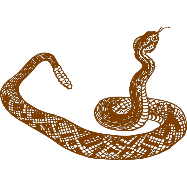 Brown Rattle Snake PNG Clip art