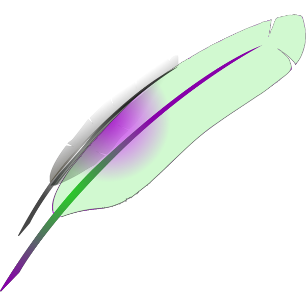 Feather PNG images