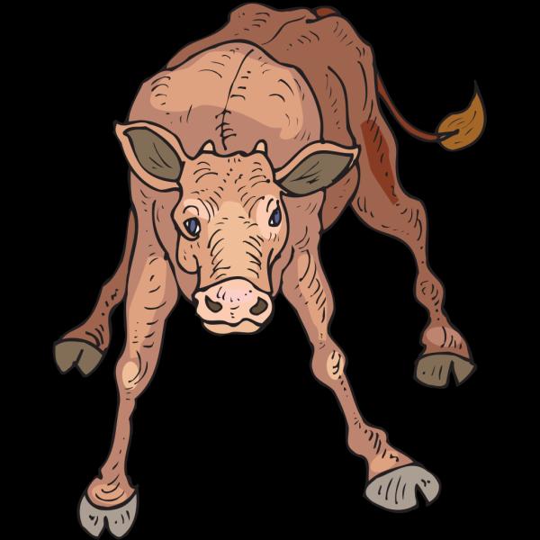 Wobbly Calf PNG Clip art