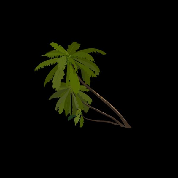 Sc Palmetto Tree PNG Clip art