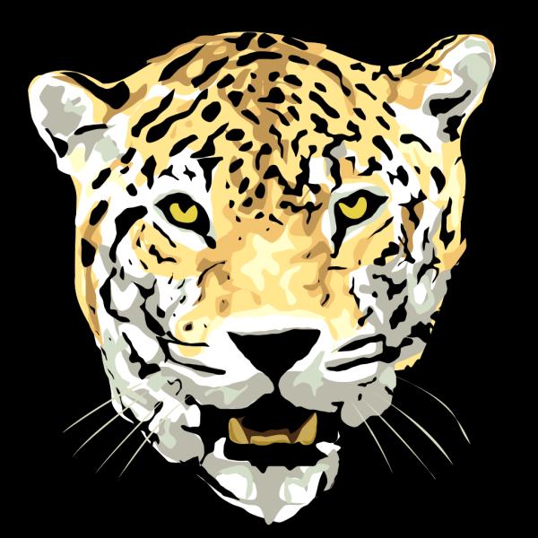 Jaguar PNG images