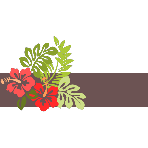 Hibflowerforspa PNG Clip art