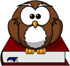 The Owl PNG Clip art