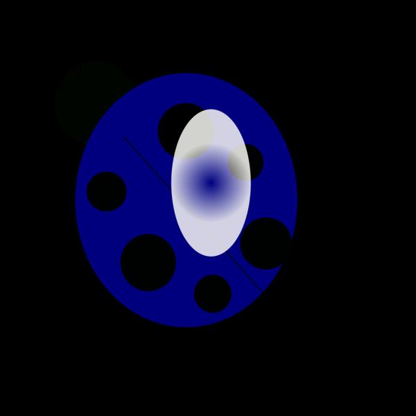 Blue Ladybug PNG images