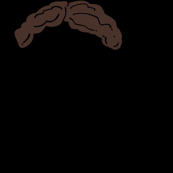 Brown Wig PNG Clip art
